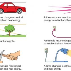 energy is conserved by changing one form to another form
