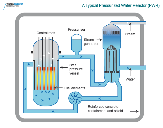 A typical diagram of pressurized water reactor (PWR)