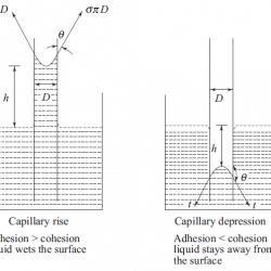 phenomena of capillarity